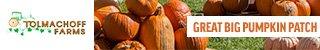 Pumpkin-Days-2019-320x50px (1)