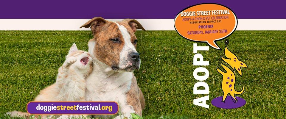 DoggieStreetFest-2020-960x400px