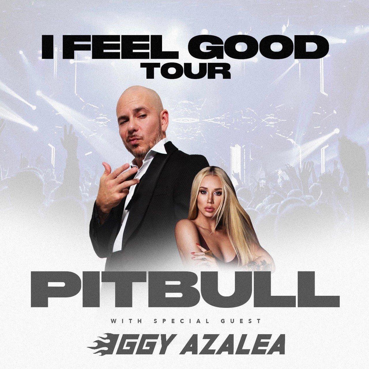 Pitbull iggy